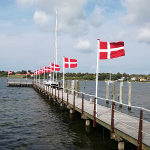 Flagstang 4 meter med flag